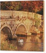 Swan On The Rye Water - Kildare, Ireland Wood Print
