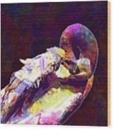 Swan Plumage Clean Water Bird  Wood Print