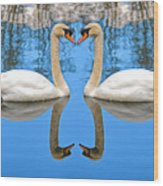 Swan Princess Wood Print