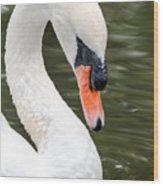 Swan Profile Wood Print