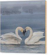 Swan Valentine - Blue Wood Print