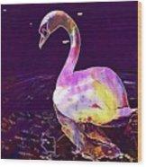 Swan Water Bird Water River  Wood Print
