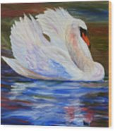 Swan Wildlife Painting Wood Print