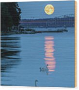 Swans And The Moonrise In Stockholm Wood Print