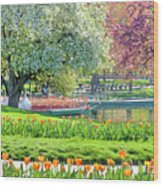 Swans And Tulips 1 Wood Print