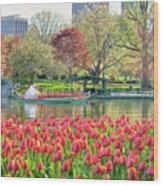 Swans And Tulips 2 Wood Print