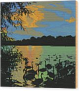 Swans At Sunset Wood Print