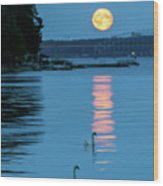 Swans Gliding Into The Moonlight During A Moonrise In Stockholm Wood Print