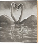 Swans In Lake Wood Print