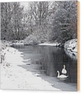 Swans In The Snow Wood Print