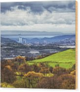Swansea And Mumbles Wood Print