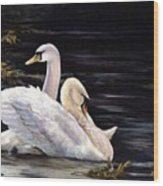 Swansong Wood Print
