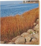 Swath Of Gold In Centerport, New York Wood Print
