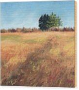 Swaying Amber Wood Print by Christine Camp