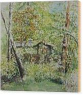 Sweden Landscape 1 Wood Print