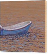Swedish Boat Wood Print