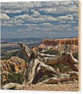 Sweeping Bryce Canyon Vista Wood Print