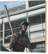 Sweet Billy Williams Wood Print by David Bearden