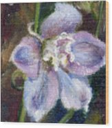 Sweet Bloom Aceo Wood Print