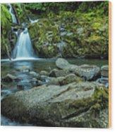 Sweet Creek Falls Wood Print