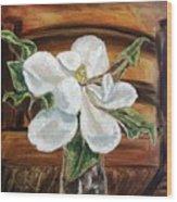 Sweet Glance Wood Print