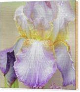 Sweet Iris Pastel Wood Print