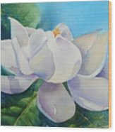 Sweet Magnolia Wood Print by Bobbi Price