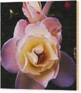 Sweet Rose Wood Print