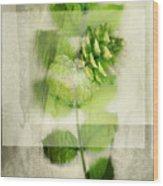 Sweet Rustic Pine Wood Print