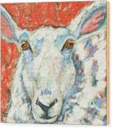 Sweet Sheep Wood Print