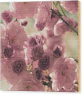 Sweet Spring Blossoms Wood Print