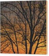 Sweet Sunset Wood Print