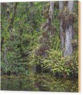 Sweet Water Strand - 12 Wood Print