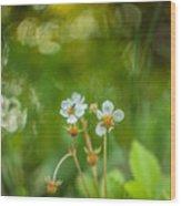 Sweet Watercolor Wood Print