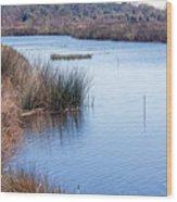 Sweetwater Wetland Pond Wood Print