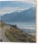 Swerving Road In Valtellina, Italy Wood Print