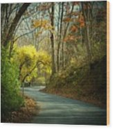 Swift Shoal Road Wood Print by Joyce Kimble Smith