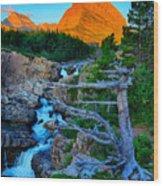 Swiftcurrent Falls Wood Print