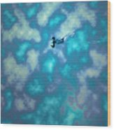 Swimming Through The Clouds Wood Print