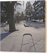 Swing Shadow On Snow Wood Print