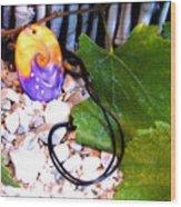 Swirl In Nature 2 Wood Print by Chara Giakoumaki