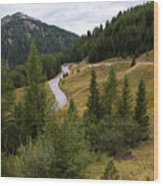 Swirling Mountain Road Wood Print