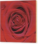 Swirling Red Silk Wood Print