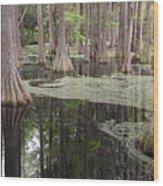 Swirls In The Swamp Wood Print