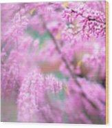 Swirls Of Spring Wood Print