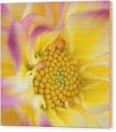 Swirly Dahlia Wood Print
