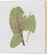Swiss Chard Wood Print