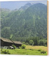 Swiss Mountain Home Wood Print
