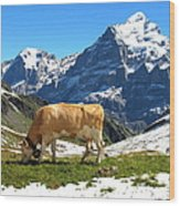 Swiss Scene Wood Print