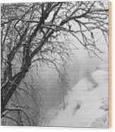 Swiss  Snow Fall Wood Print